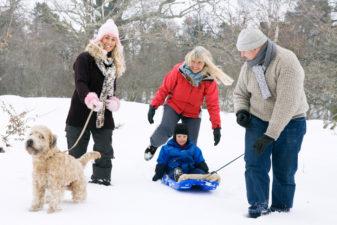 Familj ute på promenad med hund och barn i pulka